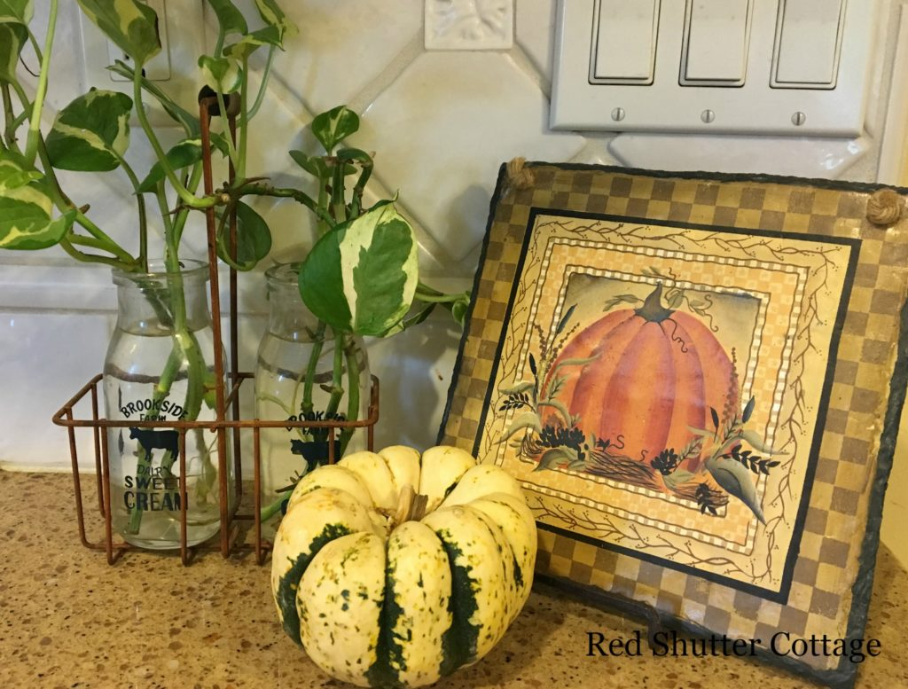 2016 Fall and Halloween Kitchen Tour Fall Kitchen Counter 2