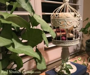 DIY – Birdcage Renovation