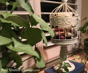 DIY – Birdcage Renovation