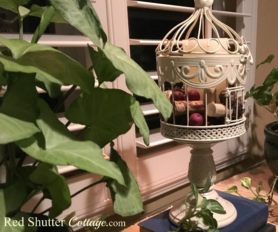 Renovated birdcage sitting on window table. www.redshuttercottage.com