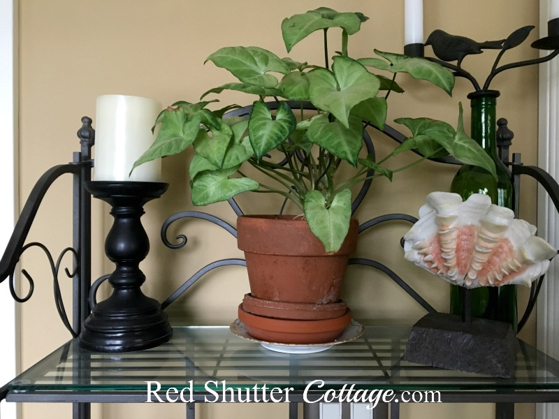 The top shelf of the baker's rack showing a candle, plant, and shell. www.redshuttercottage.com