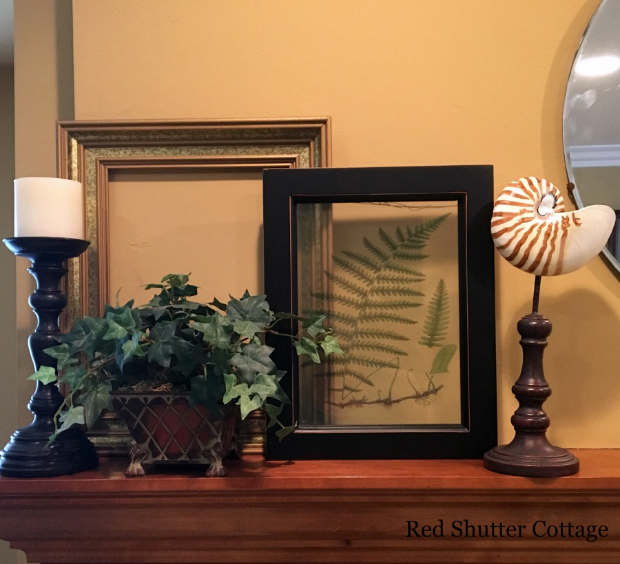 Summer mantel with frames behind topiary and shell. How to Decorate a Summer Mantel.
