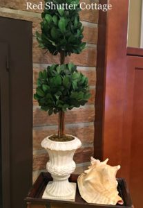 Summer hearth with large topiary and conch shell. How to Decorate a Summer Mantel.