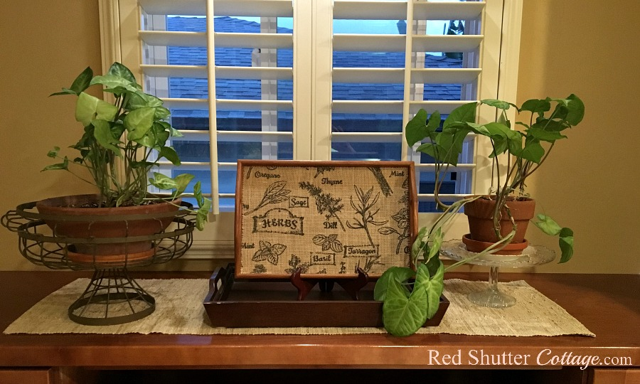 On the left hand side, styling window countertops using pots containing arrowhead plants, and a big tray holding a smaller tray. www.redshuttercottage.com