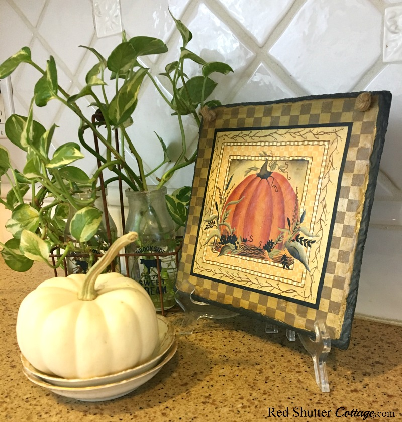This little trio of a white pumpkin, a pumpkin plaque, and a plant are part of Fall in the Kitchen 2018. www.redshuttercottage.com
