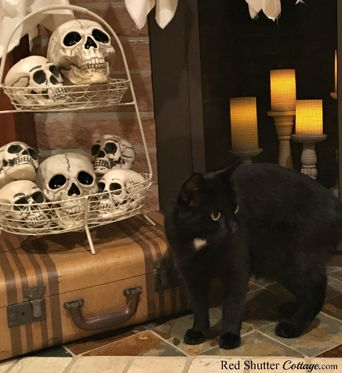 Max with the basket of skulls on the hearth of a Fun Halloween Mantel. www.redshuttercottage.com