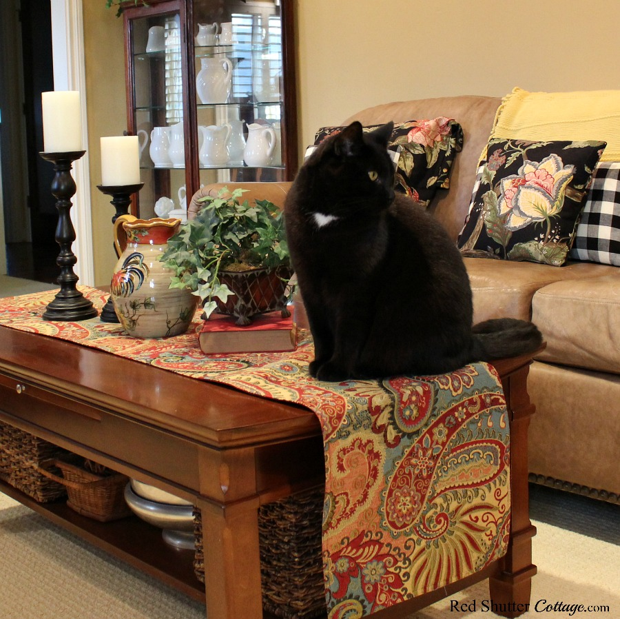 Our cat Max, surveying his domain in our Early Winter Living Room. www.redshuttercottage.com